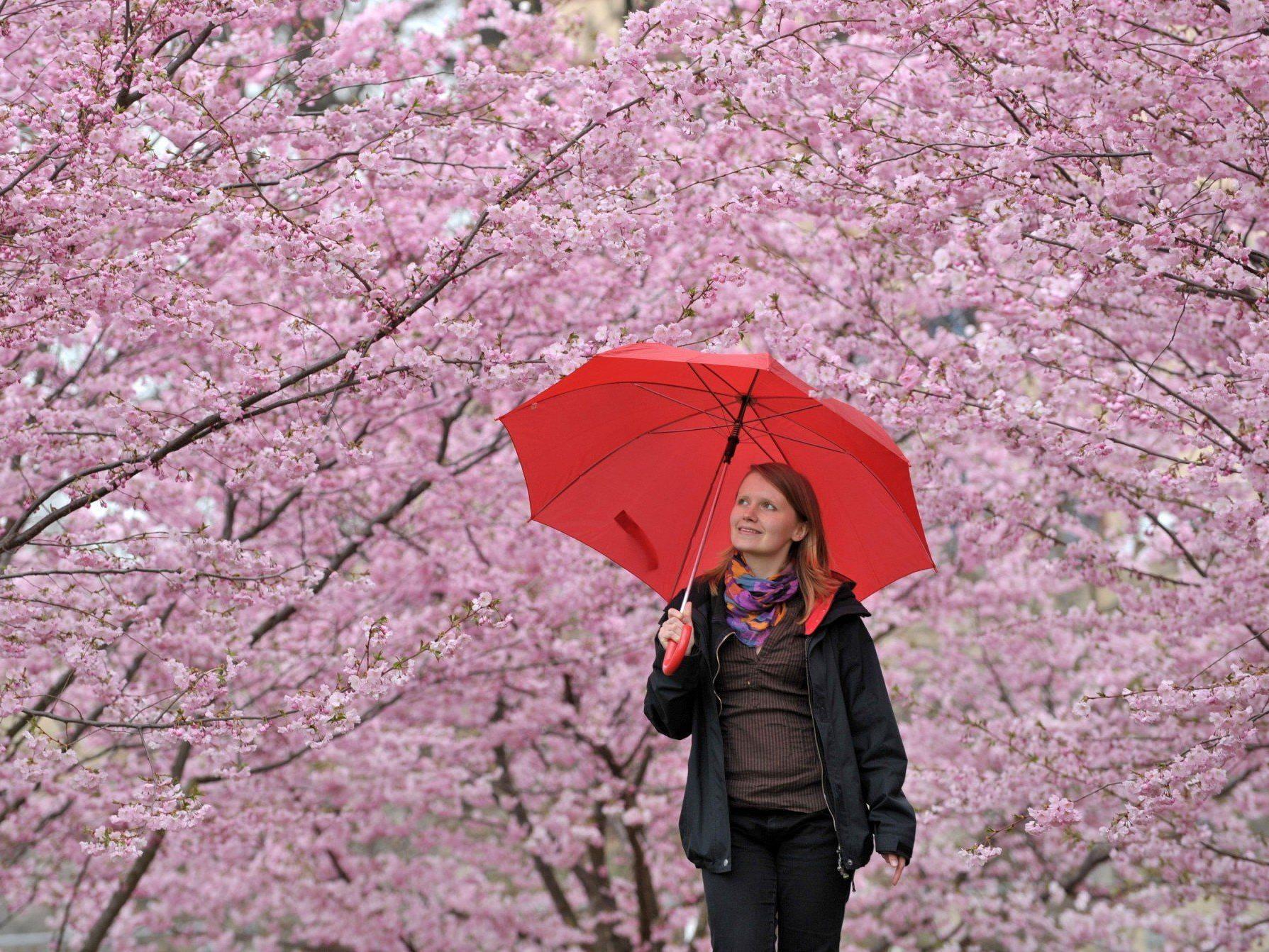 Kaltfront stört am Dienstag und Mittwoch das Frühlingswetter