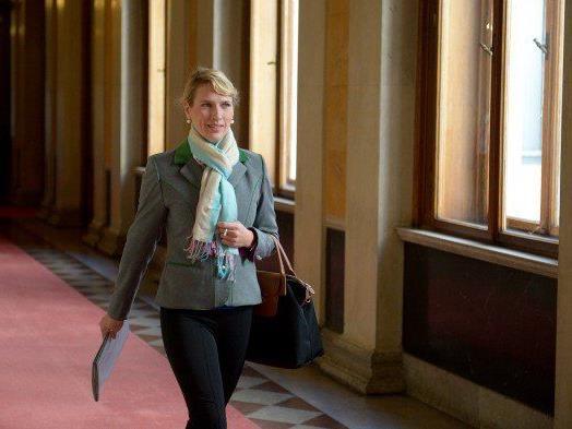 Team Stronach tritt nicht bei EU-Wahl an