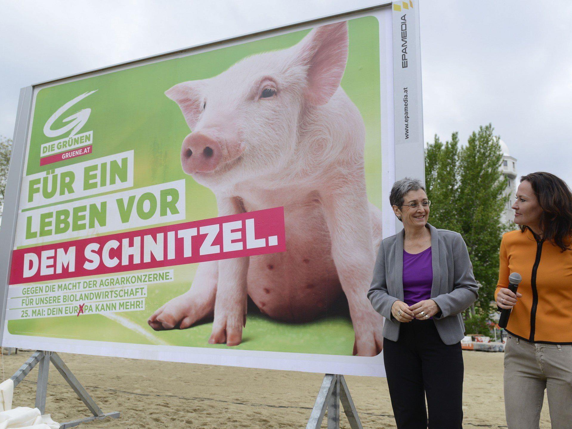 Das sind die neuen Plakate der Grünen zur Europawahl 2014.