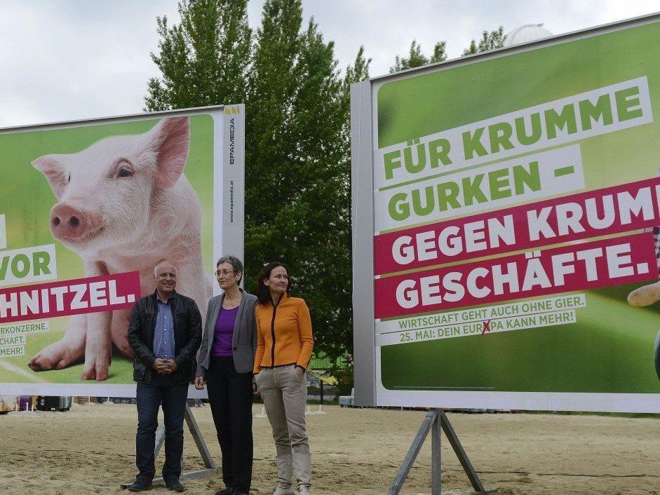 Das ist das Wahlprogramm der Grünen für die Europawahl 2014.