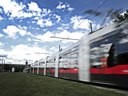Die Fahrgastinfo steht bei der neuen Homepage der Verkehrsbetriebe im Mittelpunkt.