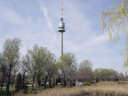 Heuer wird der Donauturm 50 Jahre alt.
