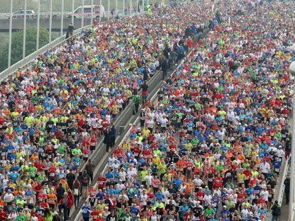 Läuferfeld beim Vienna City Marathon 2014.
