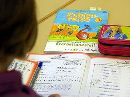 Bereits ab Herbst 2014 soll in Wien Gratis-Nachhilfe angeboten werden.