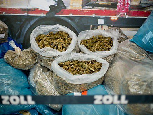 Schätzungen zufolge insgesamt 5,6 Tonnen Marihuana