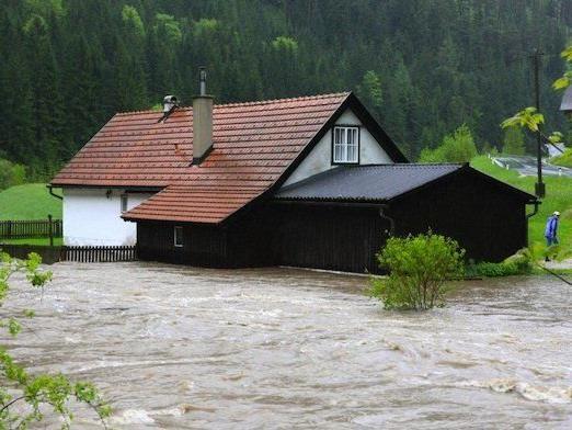 Die Situation im Bezirk Neunkirchen am Freitag