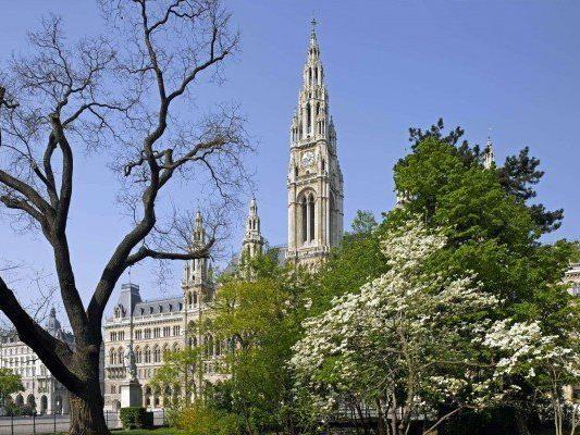 Wiener Amerlinghaus - Stadt legt noch einmal 132.000 Euro drauf