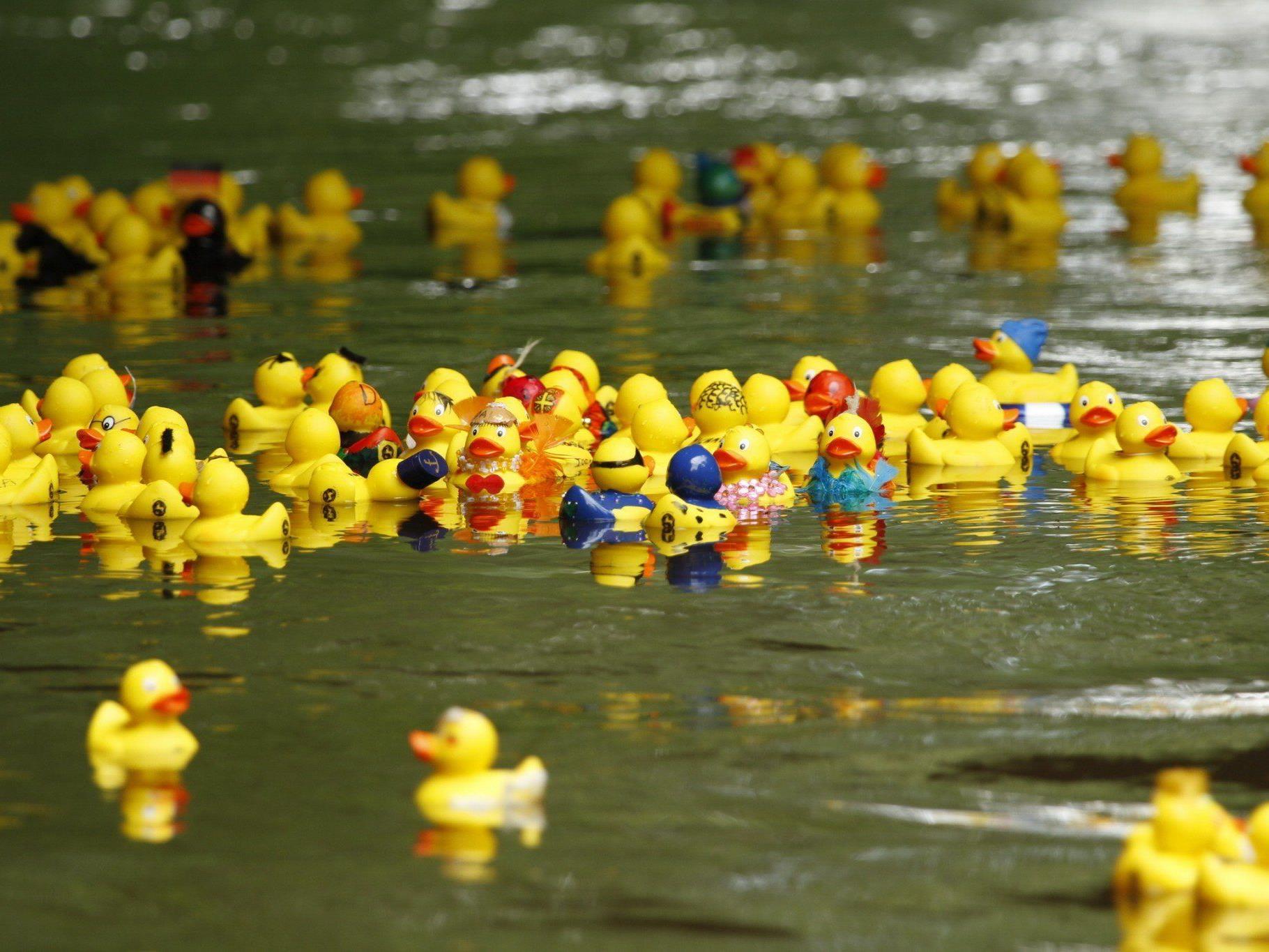 Das Entenrennen in Freilassing war ein voller Erfolg.