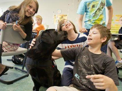 Ministerin Gabriele Heinisch-Hosek will mehr Hunde in Klassenzimmern einsetzen.