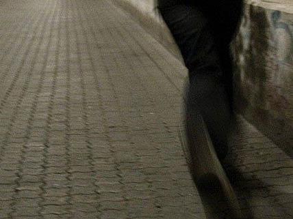 Zeugen eines Einbruchs lieferten sich mit dem Täter eine Verfolgungsjagd
