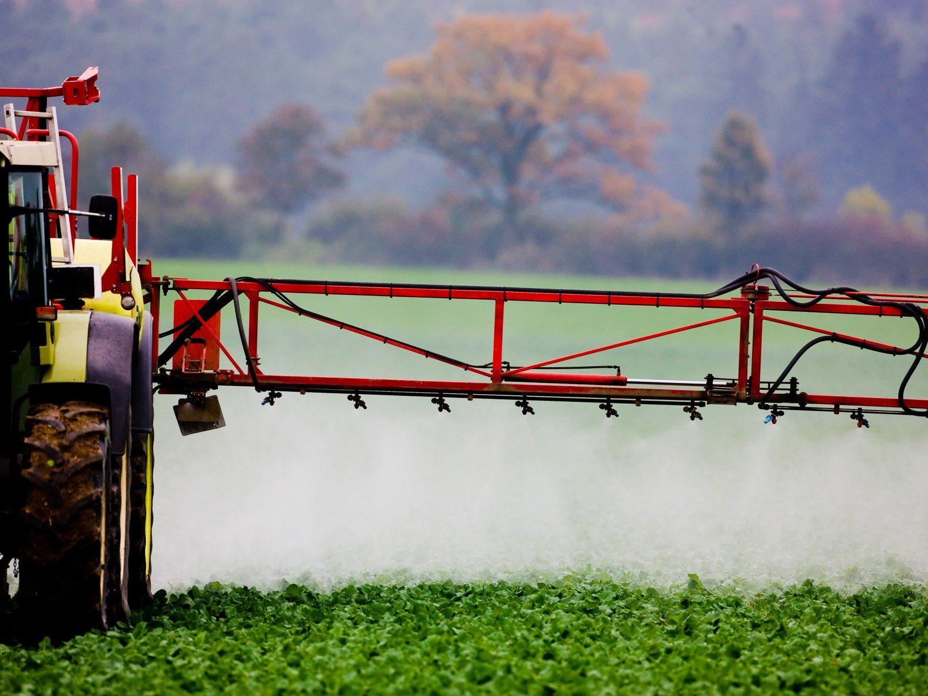 Forscher sehen ernste Gefahr für die Landwirtschaft - Beweise gegen Insektizide mit Fipronil