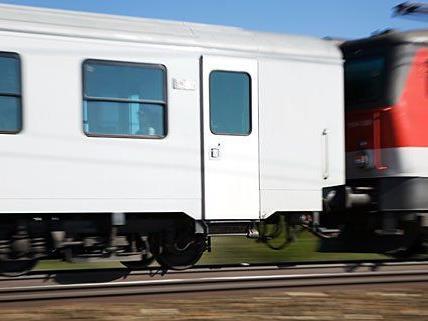 In einem Zug pöbelten die Rapid-Fans Mitreisende an