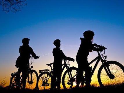 Dank des milden Wetters sind heuer mehr Radfahrer in Wien unterwegs.