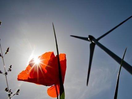 In Niederösterreich baut Wien Energie einen neuen Windpark.