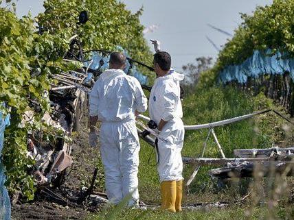 Der Pilot überlebte den Absturz am Montag nicht.