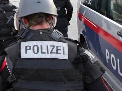 Ex-Freundin eingesperrt: Niederösterreicher von Cobra in OÖ gefasst