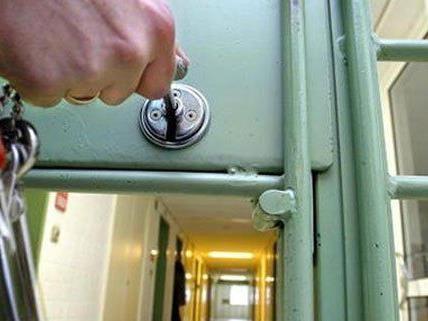 Vier der neun festgenommenen mutmaßlichen Jihadisten befinden sich in U-Haft.