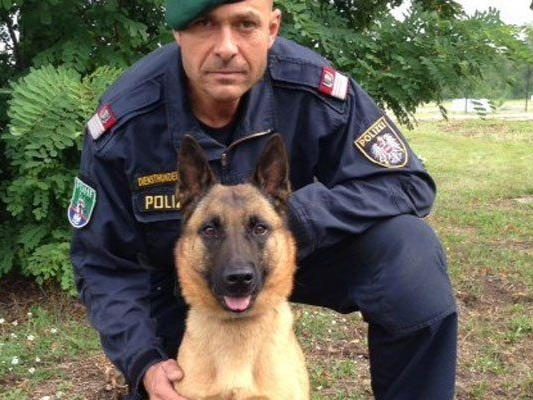 Versuchter Firmeneinbruch in Wien-Meidling: Polizeidiensthund stöbert mutmaßlichen Einbrecher auf