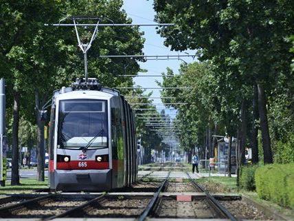 Wiener Linien senkten Energieverbrauch um 17 Prozent