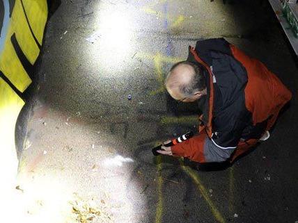 In einem Skaterpark in Wien wurde eine Leiche gefunden.