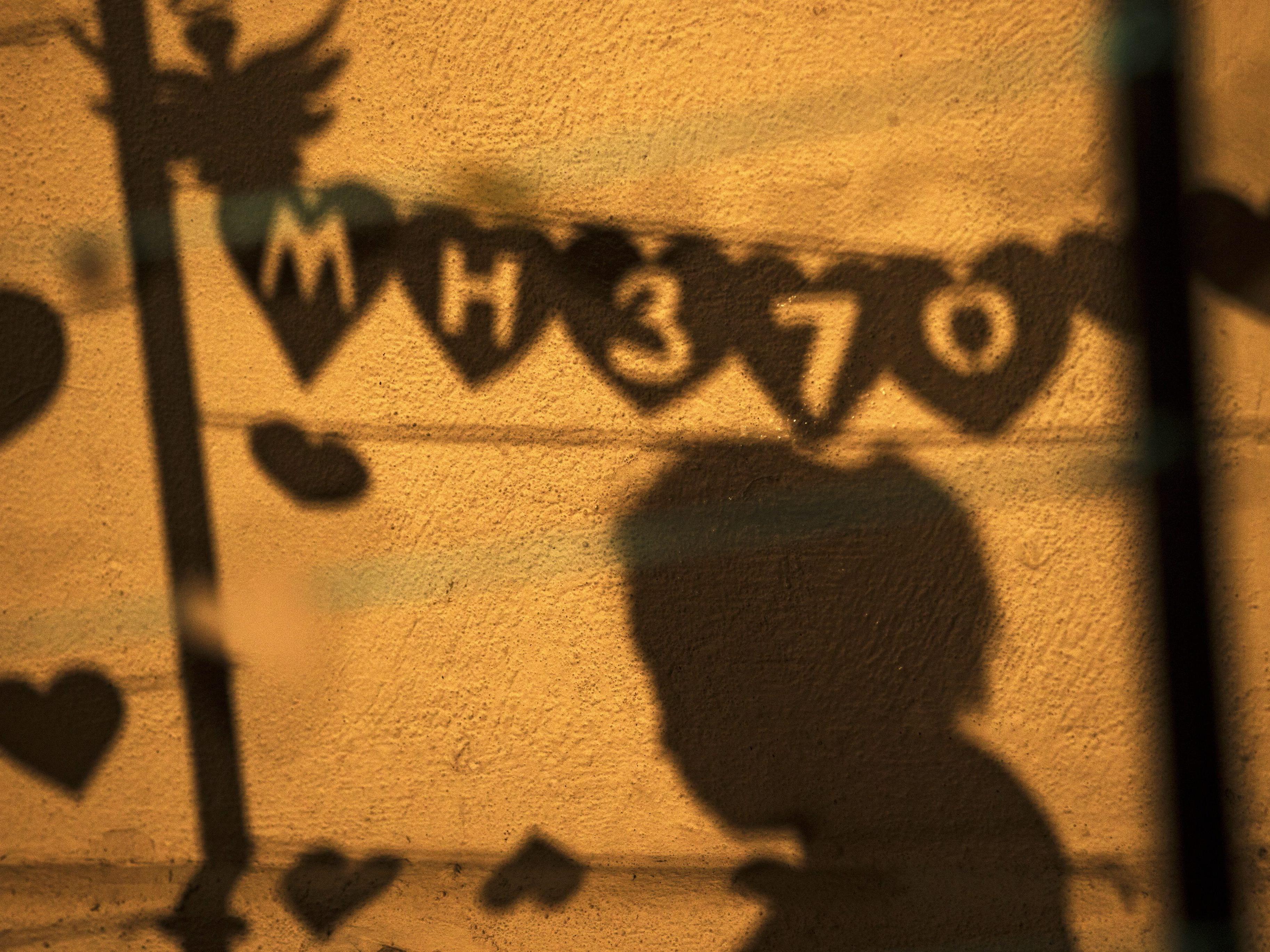 Die Kinder eines MH370-Opfers haben nun Klage eingereicht.