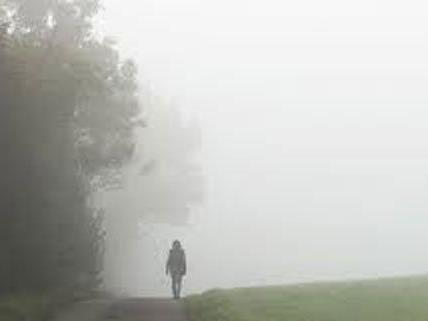 In der kommenden Woche muss mit viel Nebel gerechnet werden.