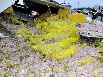 Der verunglückte Lkw hatte 20 Tonnen Putenfleisch geladen.