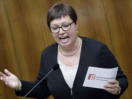 Gesundheitsministerin Sabine Oberhauser sprach über aktuelle Pläne
