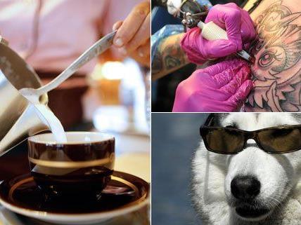 Wo bekommt man den besten Kaffee und das beste Tattoo? Und wo fühlen sich Hunde am wohlsten?