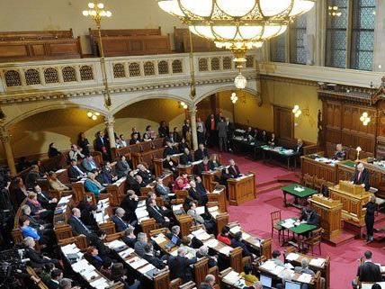 Das Budget für 2015 wurde am Dienstag in Wien beschlossen.