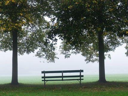 Nebel dominiert das November-Wetter in Österreich.