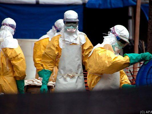 Keine Weihnachtsfeiern wegen Ebola