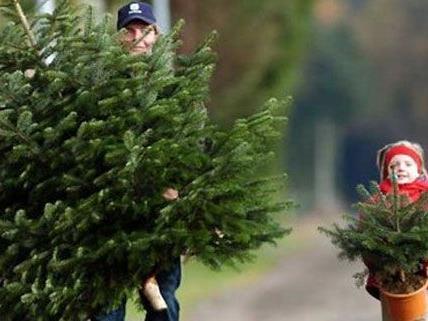 In Berichten der Metternichschen Staatspolizei ist erstmals von einem Christbaumfest in Wien,