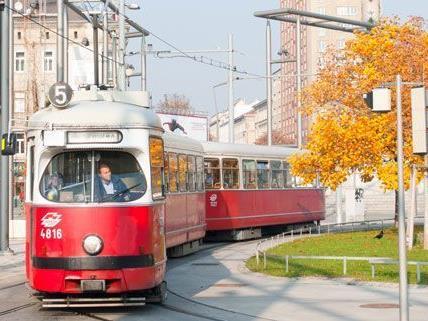 Ein Randalierer trieb in der Straßenbahn-Linie 5 sein Unwesen