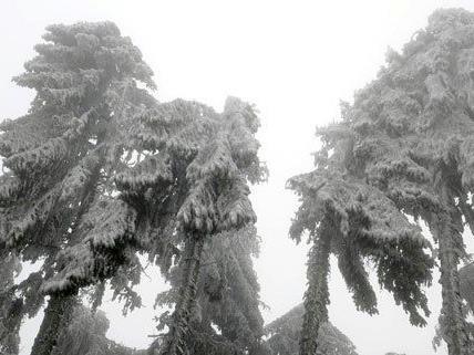 Tagelang hatte das Winterwetter Niederösterreich im Griff.
