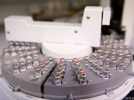 Proben werden auf HCB-Belastung analysiert