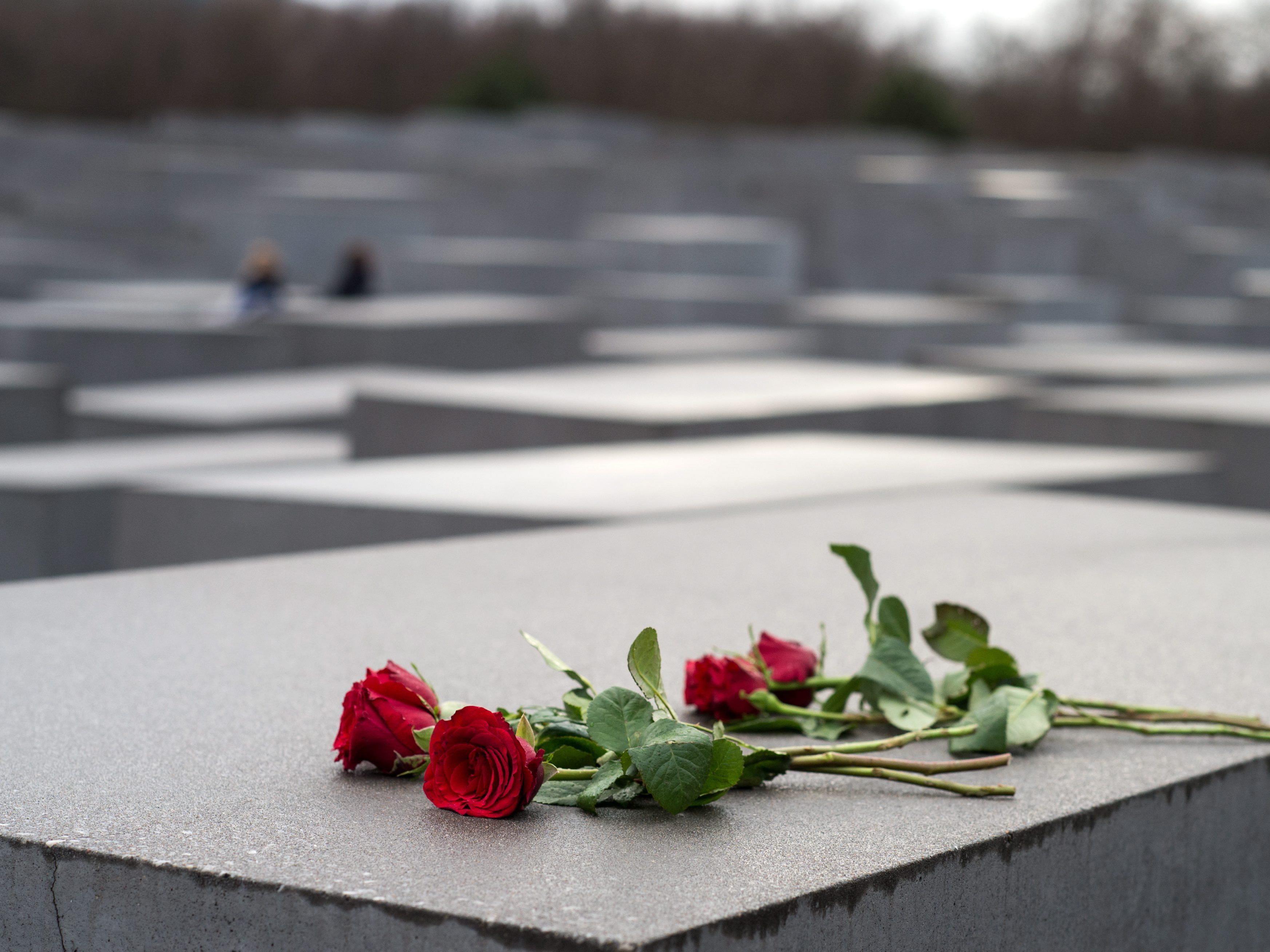 70 Jahre Befreiung von Auschwitz