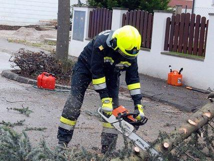 In NÖ rückte die Feuerwehr zu mehr als 100 Einsätzen aus.