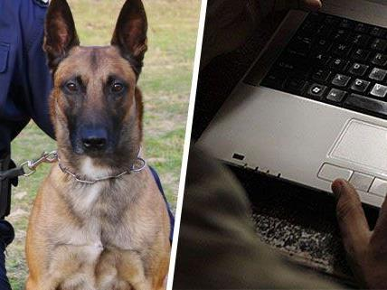 Eine Bombendrohung ging per E-Mail ein - es kam zu einem Einsatz mit Polizeidiensthunden