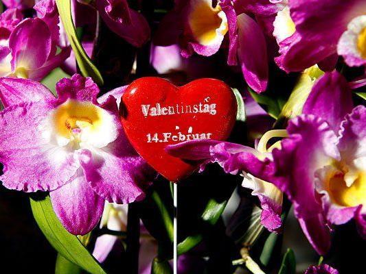 Zum Valentinstag wird längst nicht mehr nur der Partner beschenkt