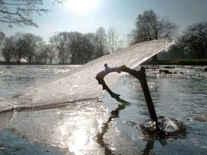 Im Eis eingebrochen - Drei Buben retten sich selbst aus Teich in NÖ