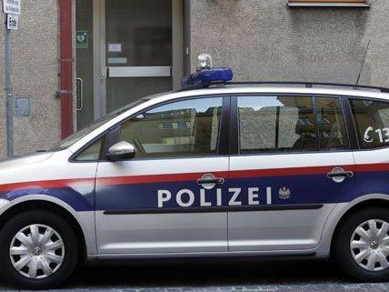 Die Wiener Polizei hat eine Straßenraubserie klären können.