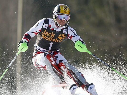 Starker Hirscher in Meribel