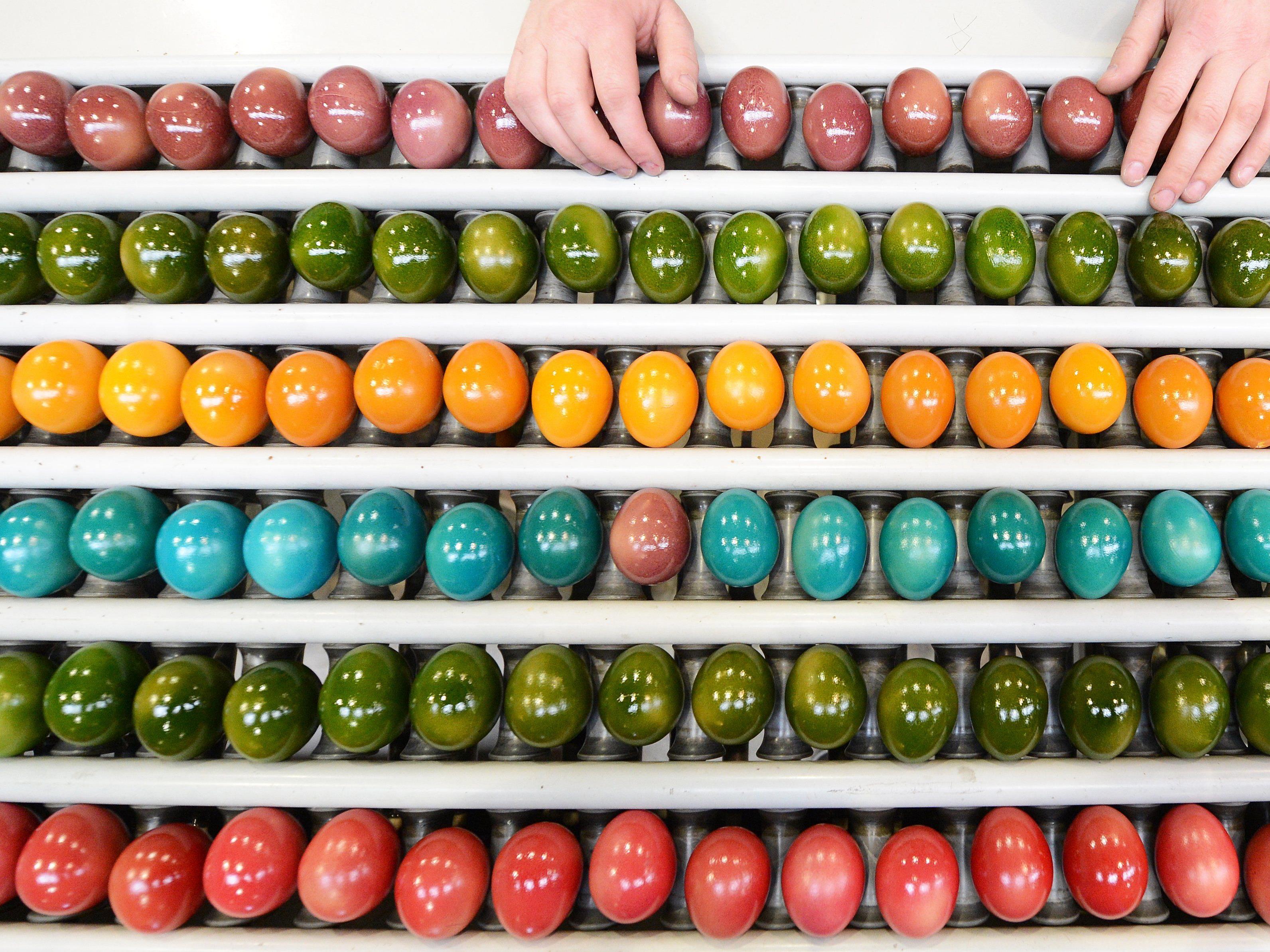 Greenpeace: Im Handel erhältliche Farben unzureichend gekennzeichnet.