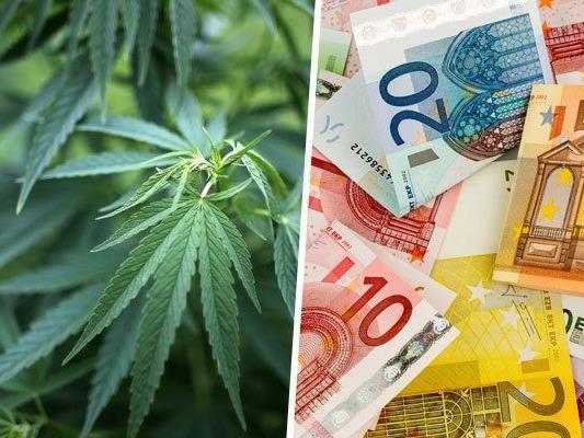Ein Cannabis-Dealer konnte festgenommen werden.