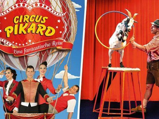Der niederösterreichische Circus Pikard ist auf Tournee.
