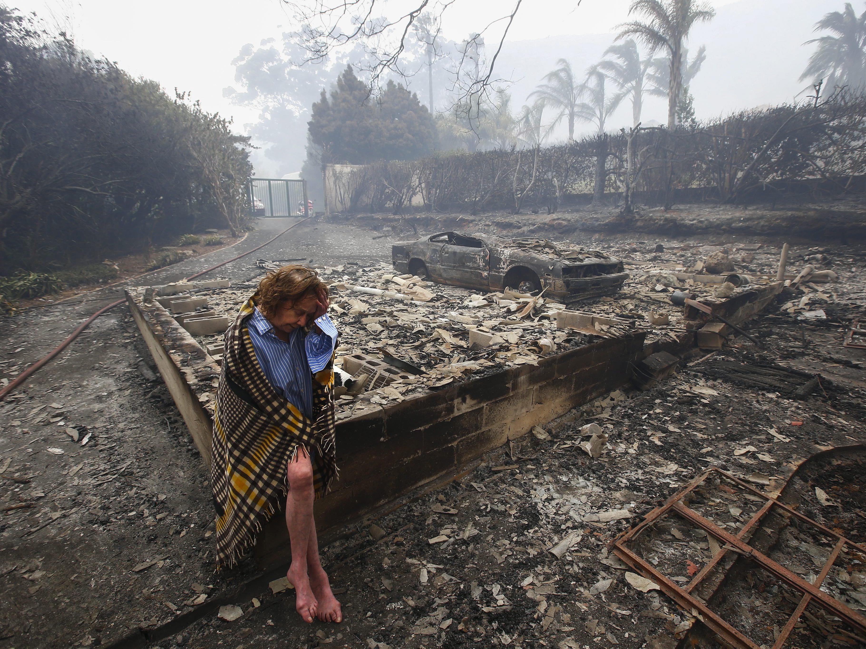 Auch tausende Hektar Land gingen bisher in Flammen auf.