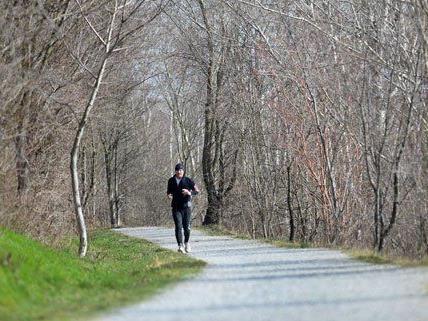 Ein Läufer auf einem Weg entlang des Marchfeldkanales in Wien.