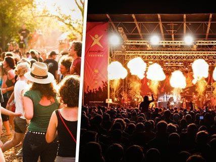 Anfang August feiert das Picture On Festival sein 15-Jahr-Jubiläum.