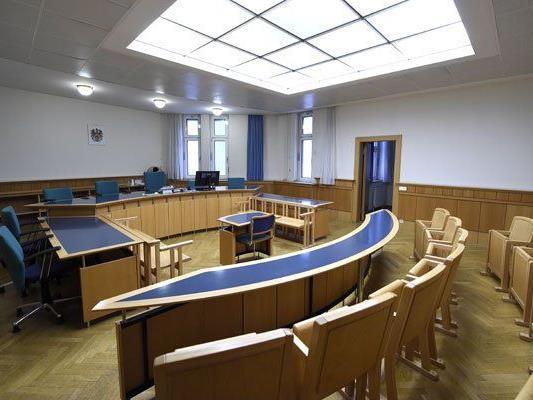 Im Wiener Landesgericht wurde der Mann zu 10,5 Jahren Haft verurteilt.